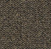 Coral Marine - 4204 Santos brown