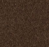 Coral Marine - 4226 Tanger brown